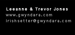 Send mail to Leeanne and Trevor Jones